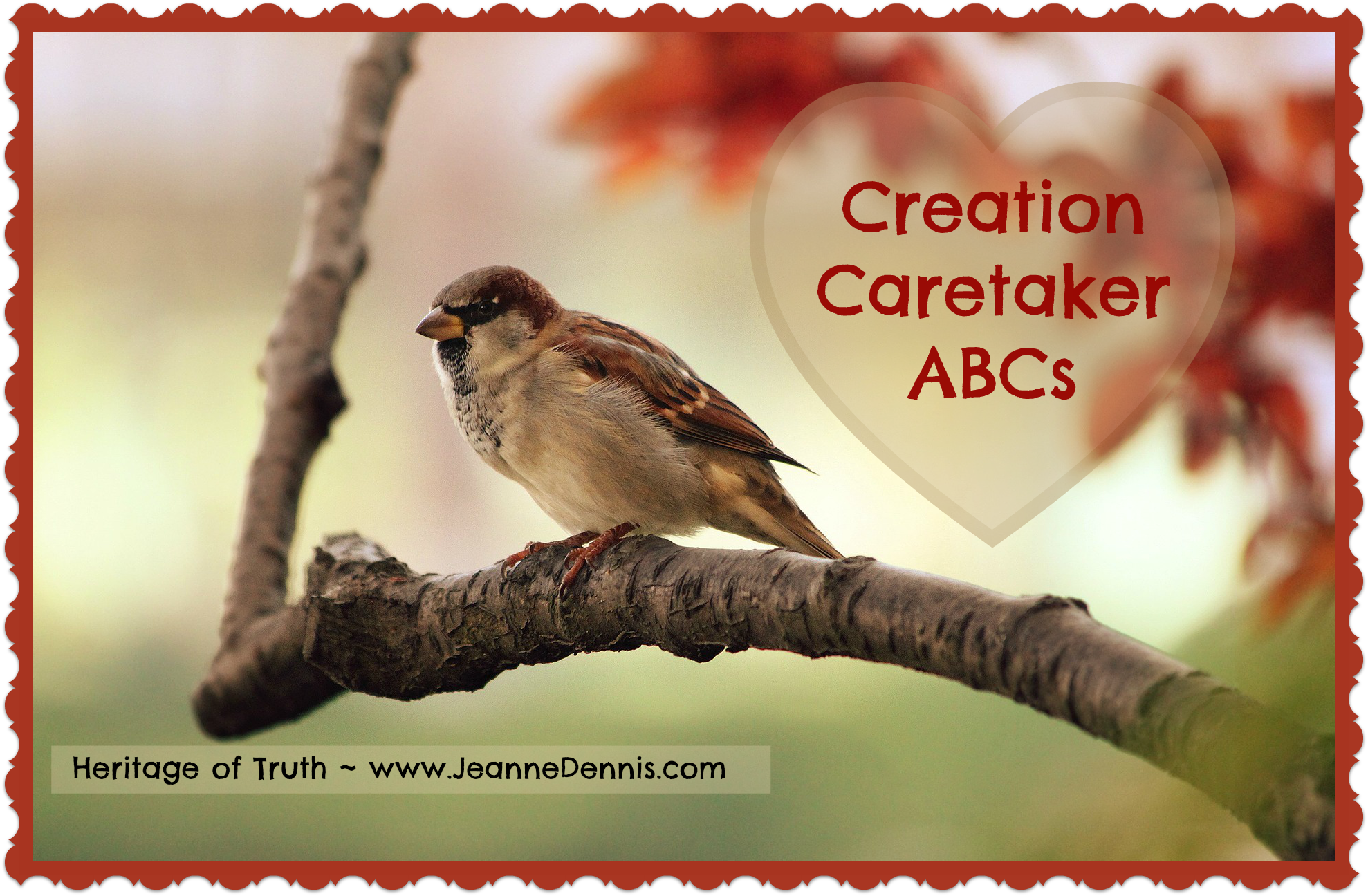 Creative Caretaker ABCs sparrow on limb