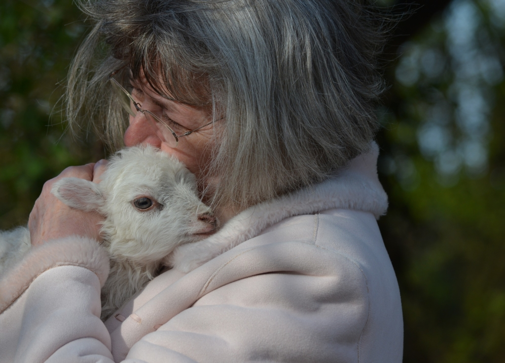 woman holding lamb